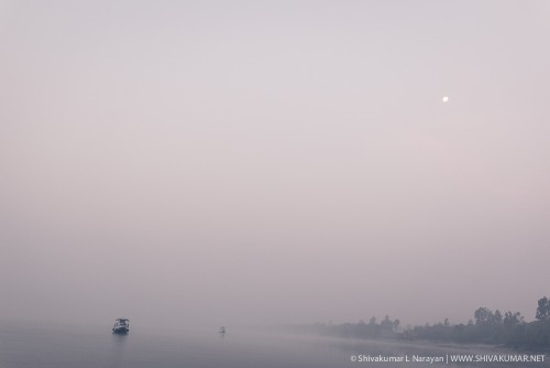 Moon set on a foggy winter morning in Sundarbans
